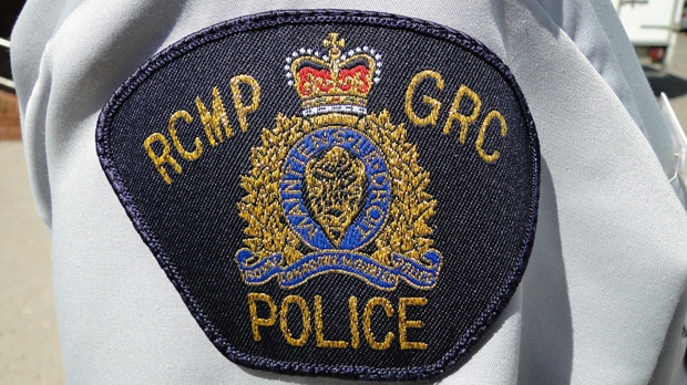 Humboldt RCMP say a highway collision between a minivan and a moose killed a 43-year-old man.
