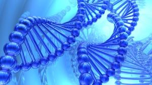 Illustration of a DNA strand (suravid / shutterstock.com)