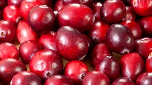 Cranberry capsules didn't prevent or cure urinary infections in nursing home residents in a study challenging persistent unproven claims to the contrary.
