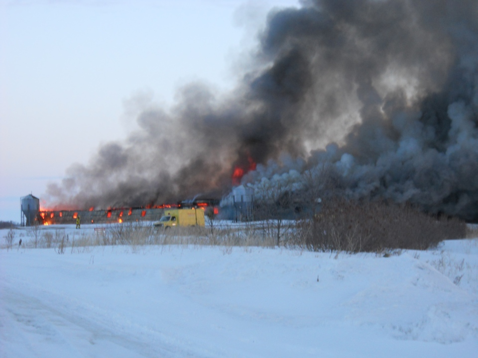 A fire northwest of Lanigan destroyed a hog barn and killed 3,500 young pigs Monday evening. (RCMP)