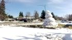 Giant snowman Saskatoon timelapse