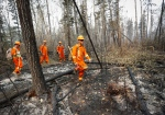 Members of the Canadian Forces look for hotspots from wildfires near Montreal Lake, Sask., Thursday, July 9, 2015. THE CANADIAN PRESS/Jeff McIntosh