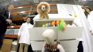 CTV News Channel: IKEA recalls 'Malm' dressers