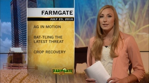 Farmgate is Saskatchewan's only farm magazine program and is the most-watched agricultural program in the province