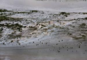 SASK. OIL SPILL