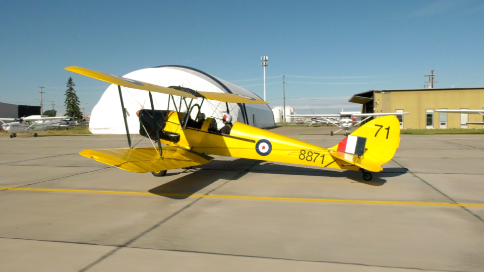 "Barbara ""Jo"" Reed Tiger Moth"